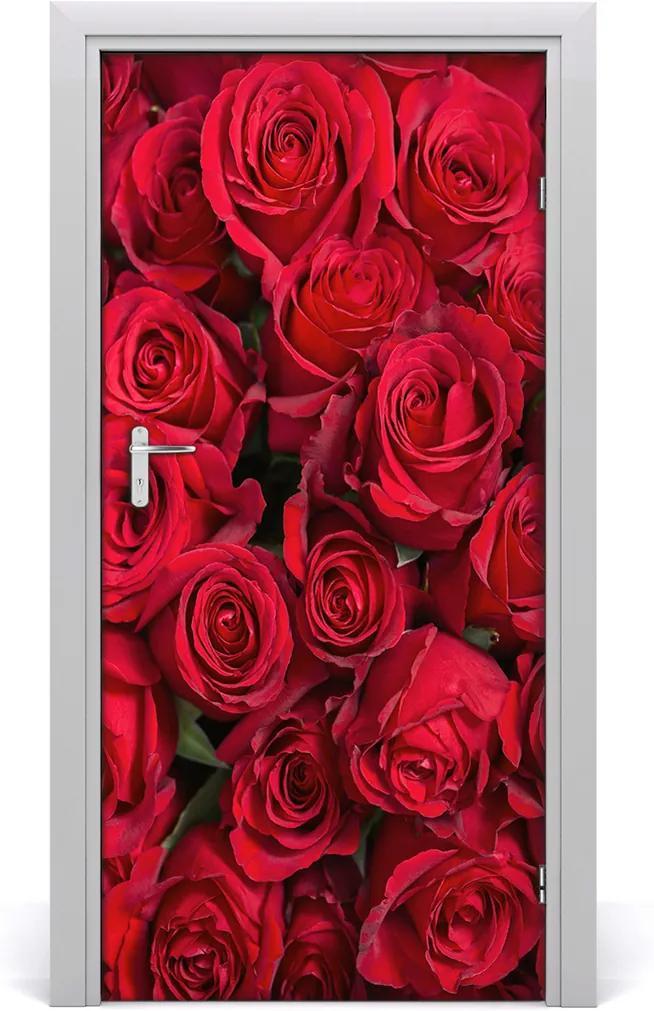 Fototapeta samolepící Červená růže