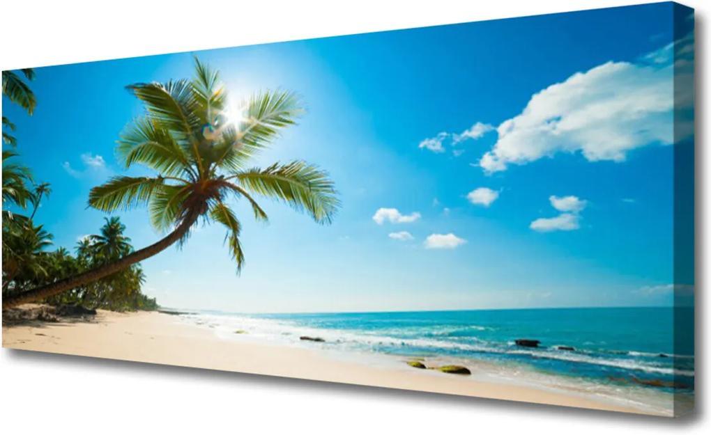 Obraz Canvas Palma strom pláž krajina