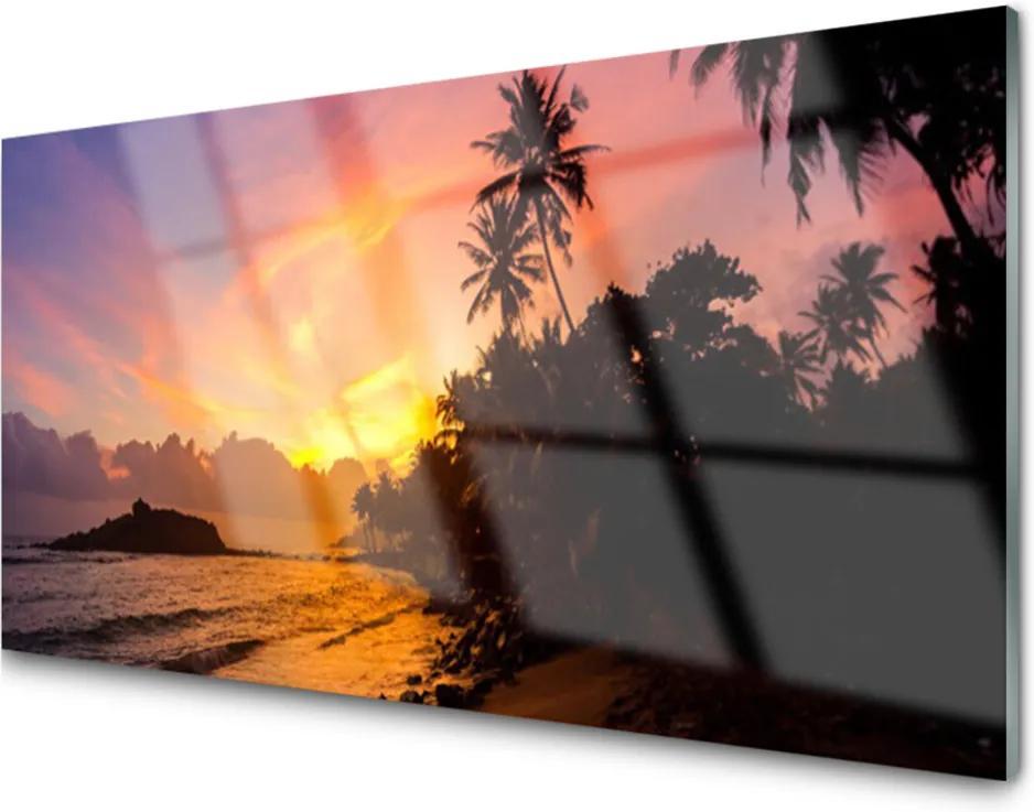 Skleněný obraz Moře slunce palmy krajina