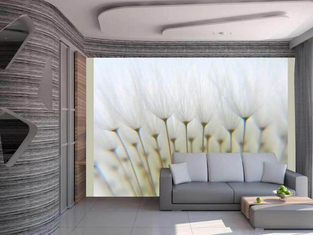 Murando DeLuxe Tapeta chmýří v bezvětří 150x116 cm