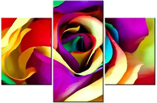 Tlačený obraz Farebná ruža 90x60cm 2137A_3B