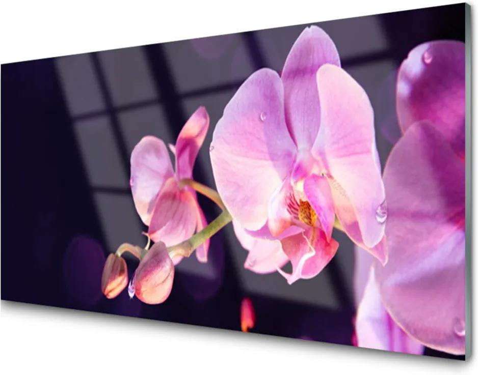 Akrylové obraz Skleněný květiny rostlina