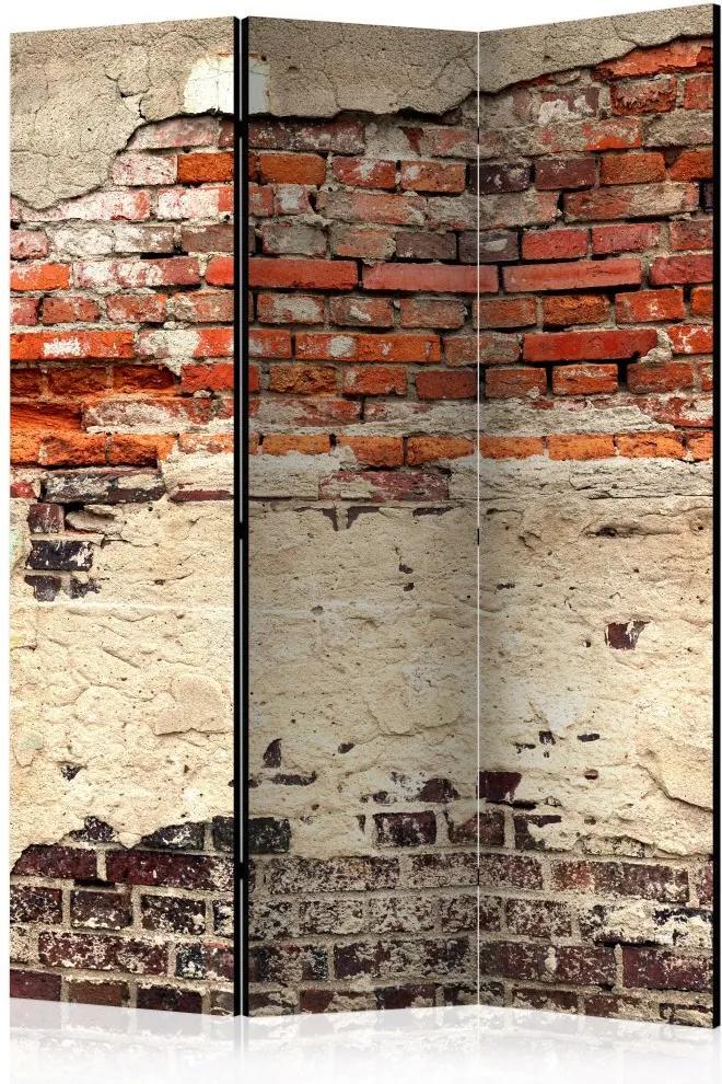 Paraván - City History 135x172