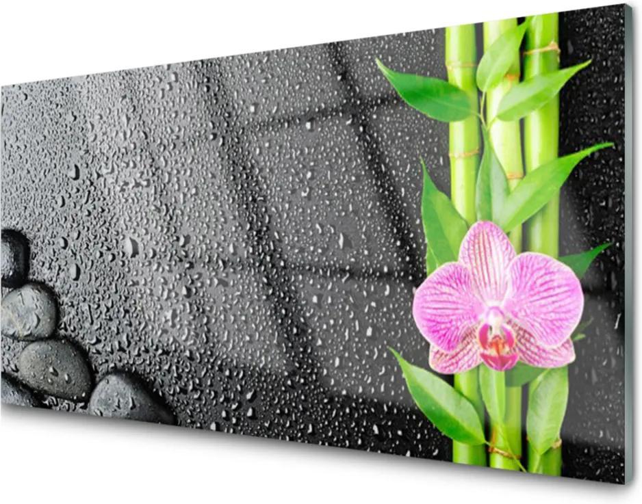 Sklenený obklad Do kuchyne Bambus Stonka Kvet Rastlina