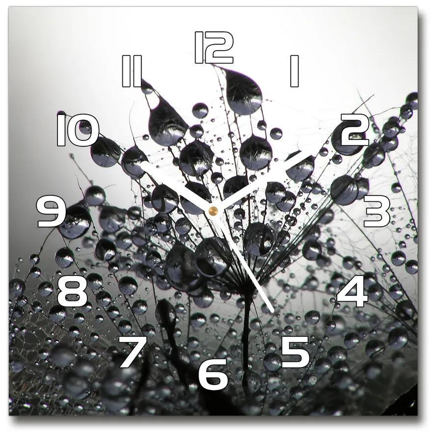 Sklenené hodiny štvorec Semená púpavy pl_zsk_30x30_f_513618