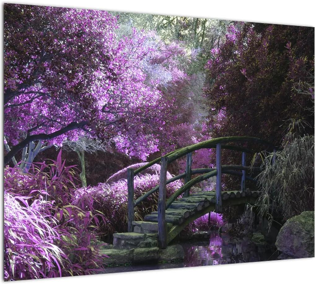 Obraz - Mystická záhrada (70x50 cm), 40 ďalších rozmerov