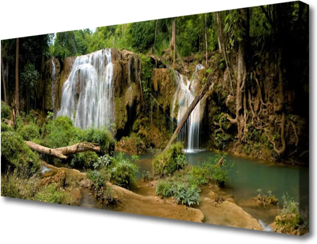 Obraz na plátně Vodopád řeka les příroda