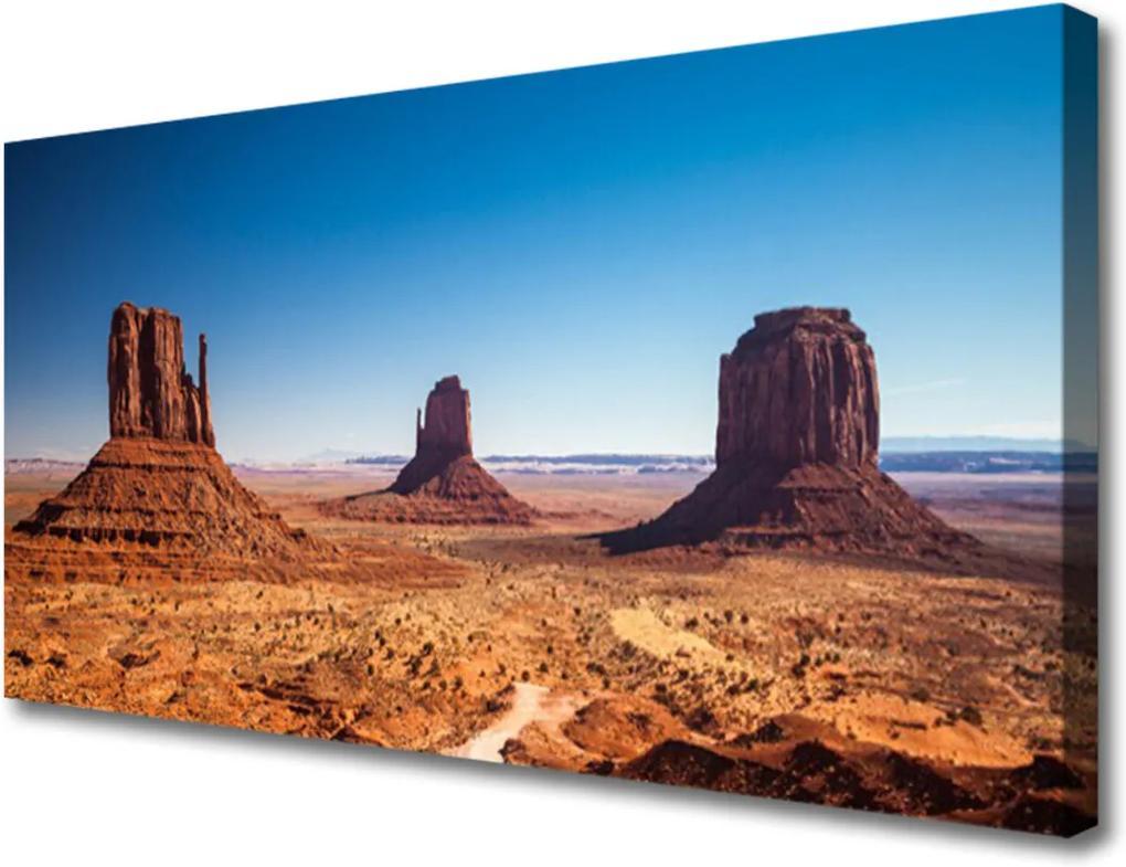 Obraz Canvas Poušť hory krajina