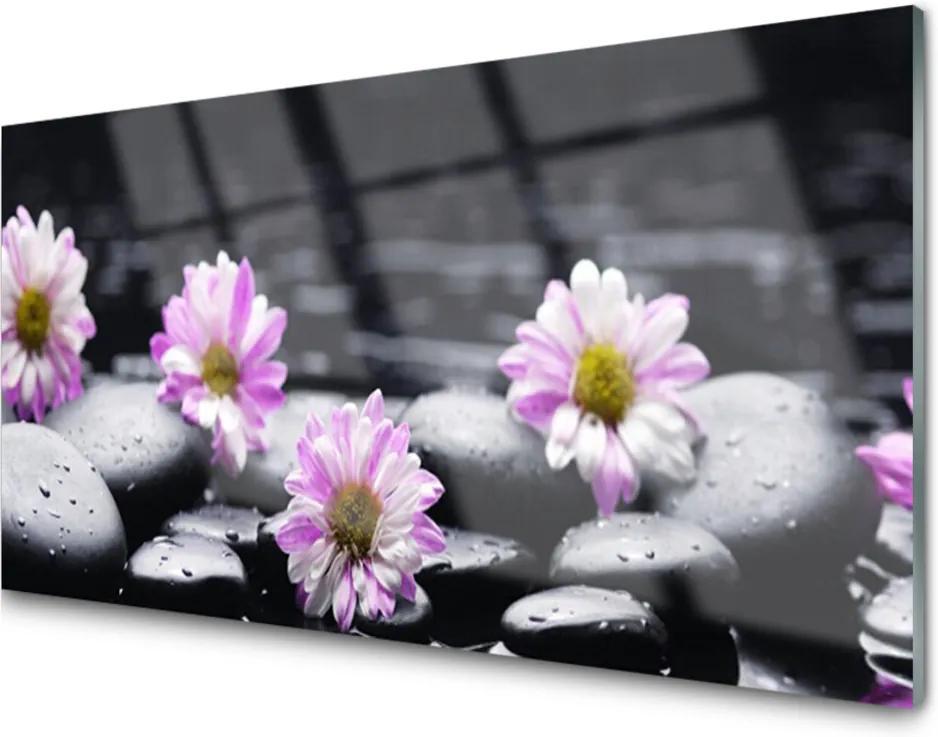 Skleněný obraz Kvet Kamene Rastlina