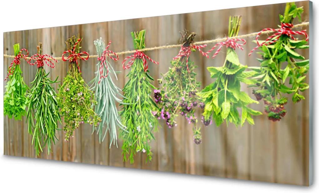 Sklenený obklad Do kuchyne Sušené Byliny Listy Príroda