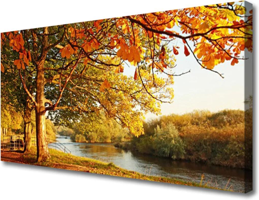 Obraz Canvas Strom Jazero Príroda