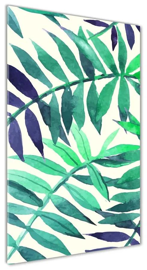 Foto obraz akrylový Tropické listy pl-oa-70x140-f-89951798