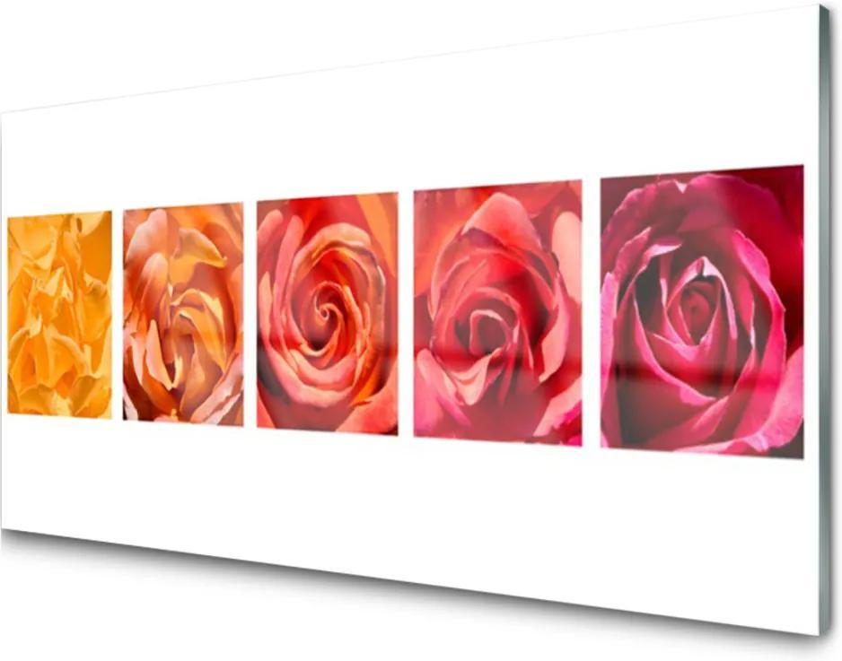 Sklenený obklad Do kuchyne Ruže Kvety Rastlina