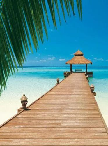 Fototapety, rozmer 183 x 254 cm, Paradise Beach, W+G 376