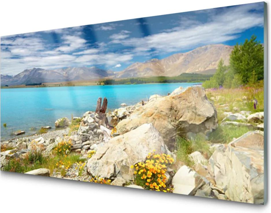 Plexisklo obraz Moře skály krajina