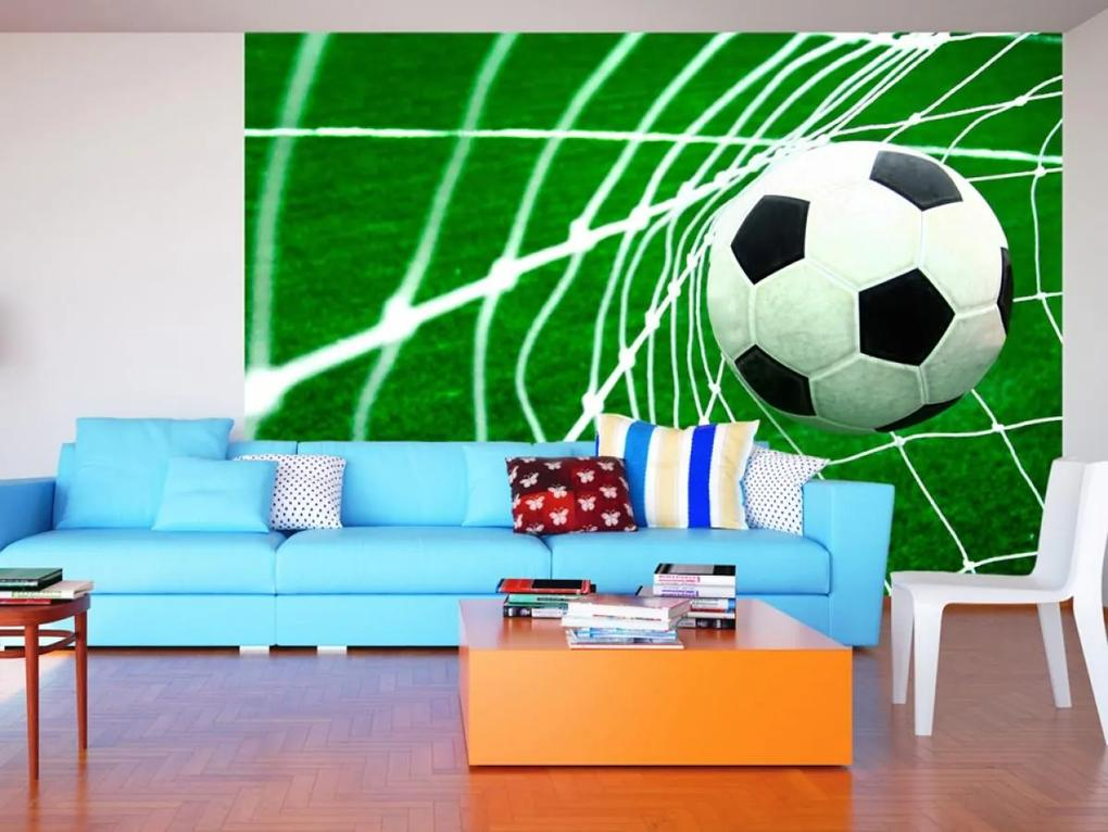 Murando DeLuxe Fotbal 150x105 cm
