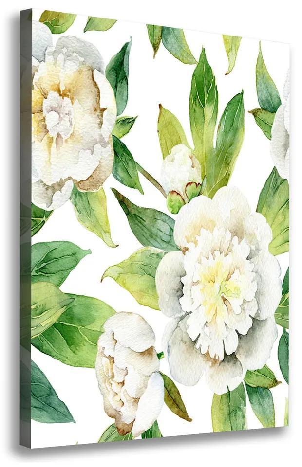Moderný obraz canvas na ráme Pivoňka pl-oc-70x100-f-121809062