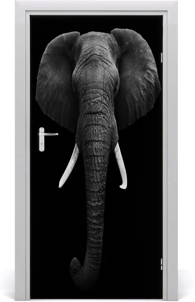 Samolepící fototapeta na dveře Africký slon