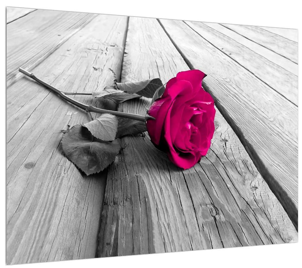 Obraz ruže (K011856K7050)