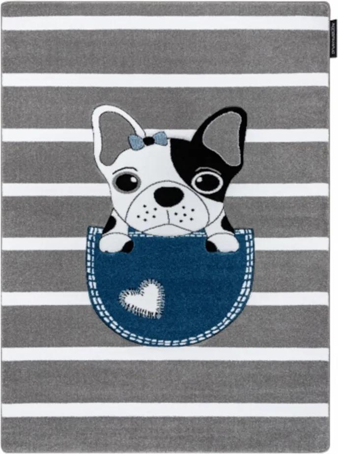 Detský kusový koberec Buldog vo vrecku sivý, Velikosti 200x290cm