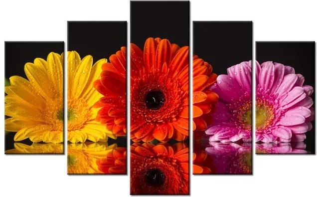 Tlačený obraz Krásne gerbery a rosa 100x63cm 2222A_5D