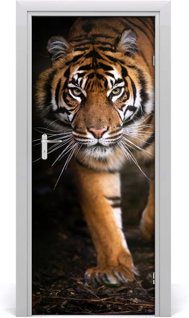 Fototapeta samolepící na dveře Tygr