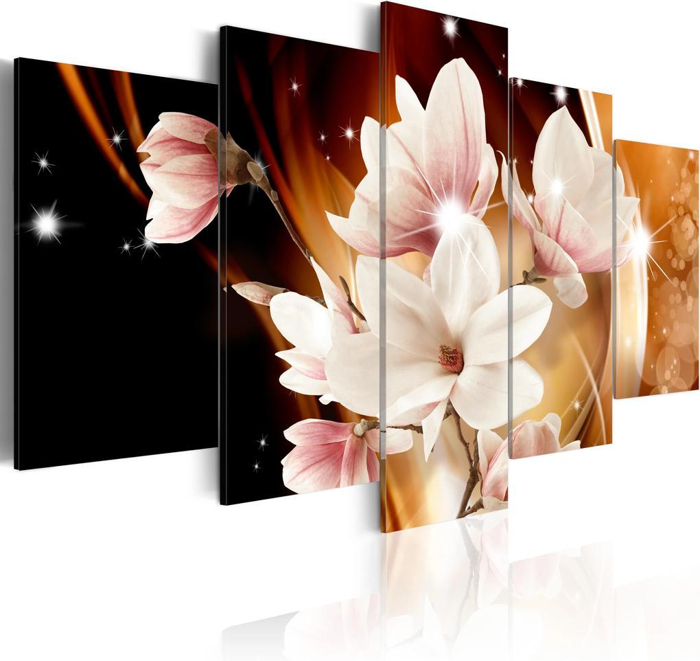 Obraz - Illumination (Magnolia) 100x50