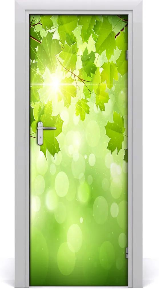 Fototapeta samolepící Zelené listí
