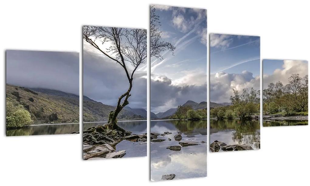 Obraz rieky za stromom (125x70 cm), 40 ďalších rozmerov