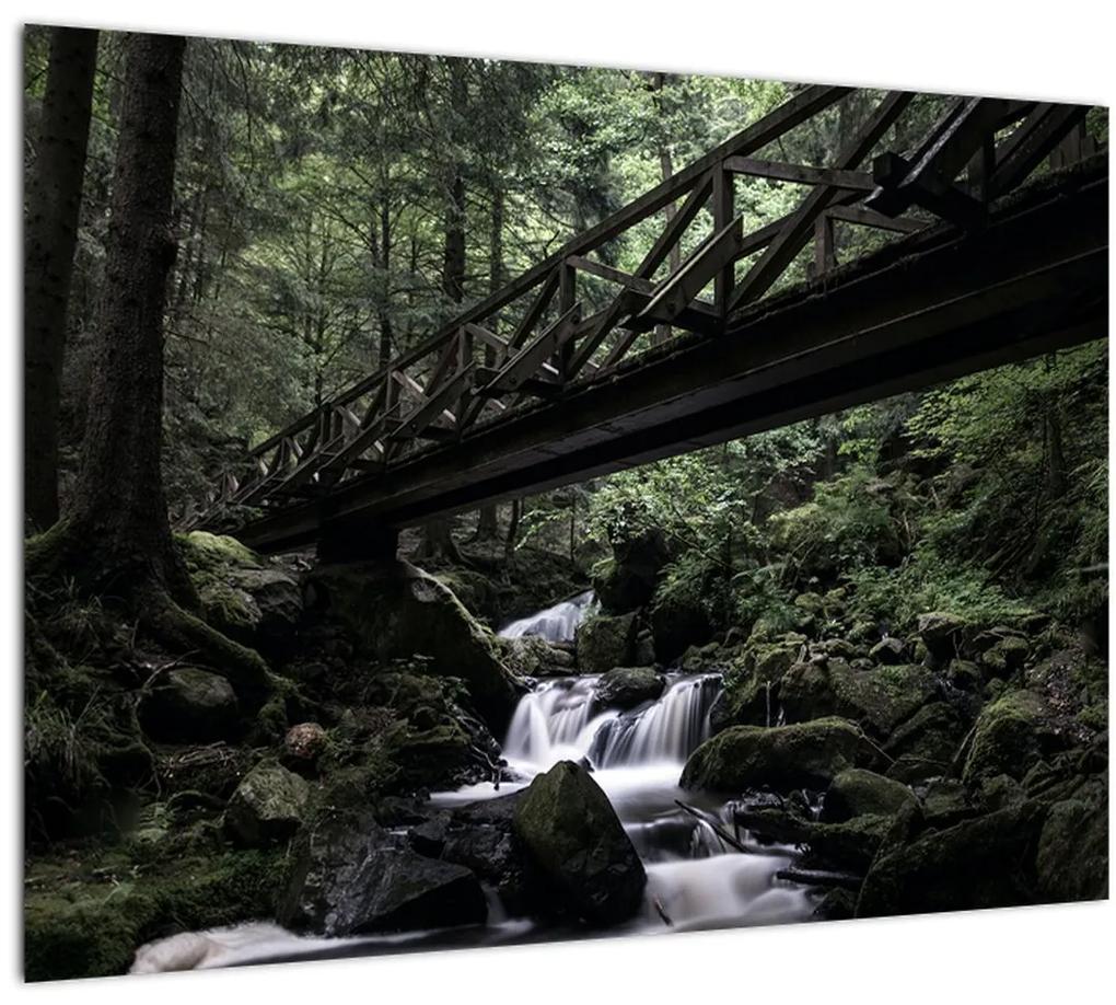 Obraz z čierneho lesa (70x50 cm), 40 ďalších rozmerov