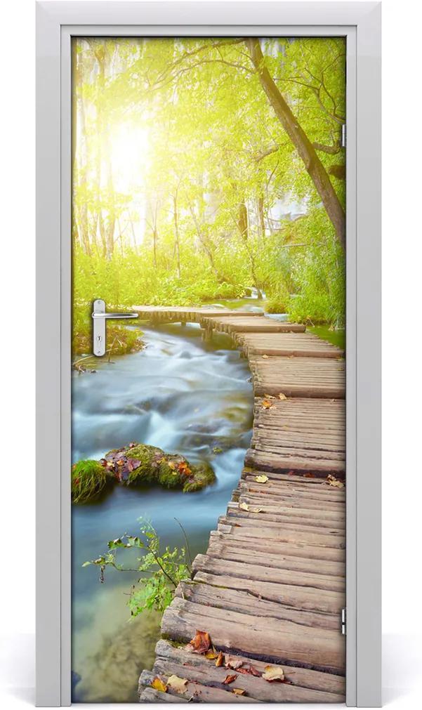 Fototapeta na dveře Stezka v lese
