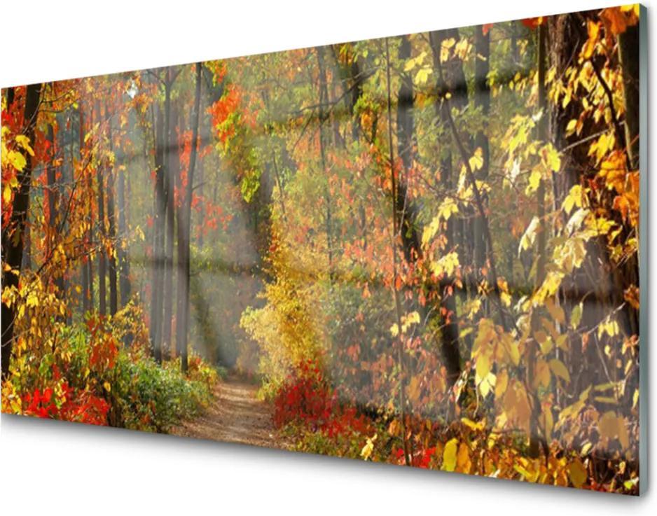 Obraz plexi Sklenený Les Príroda Jeseň