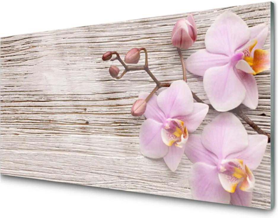 Skleněný obraz Květiny rostlina příroda