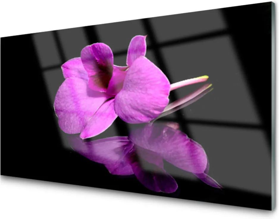 Obraz plexi Kvety Mtvá Príroda