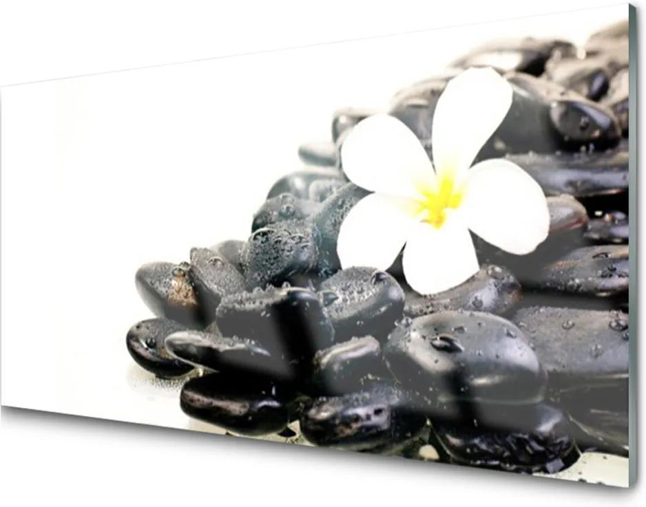 Sklenený obklad Do kuchyne Kvety Kamene Umenie