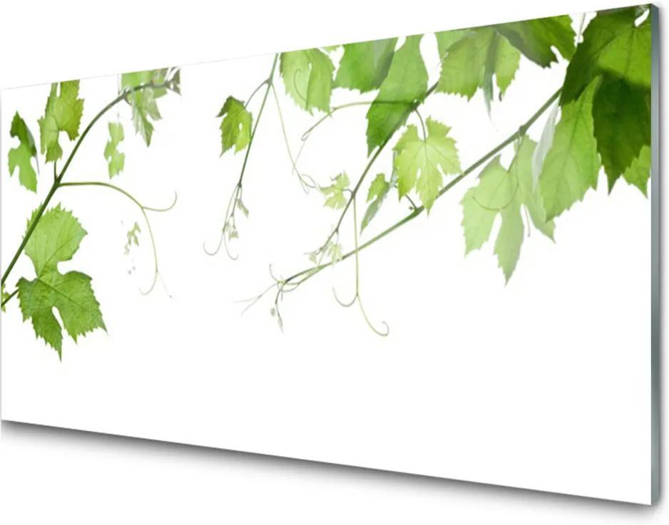 Sklenený obklad Do kuchyne Vetvy Listy Príroda Kvety