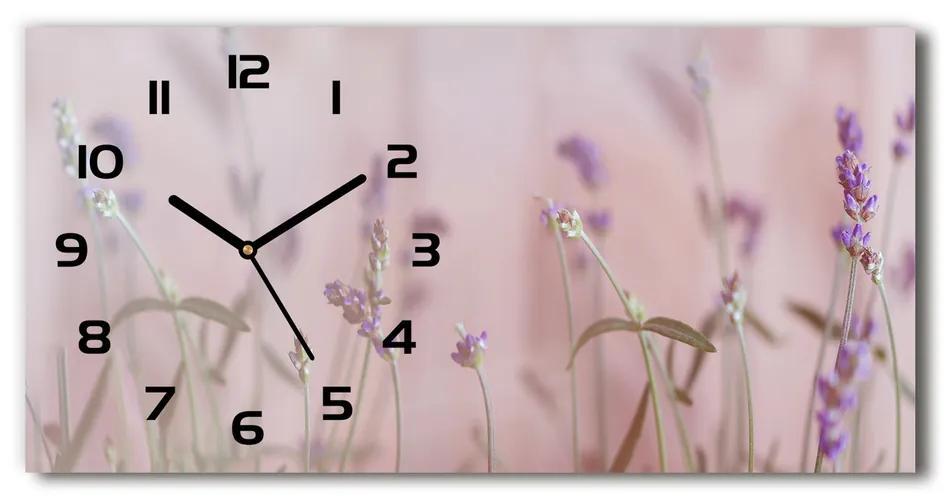 Moderné sklenené hodiny na stenu Levanduľa pl_zsp_60x30_f_85603385