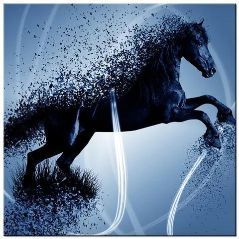 Tlačený obraz Modrý kôň – Jakub Banas 3574A_1AI