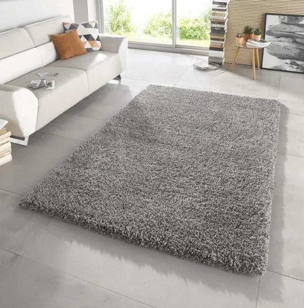 Mint Rugs - Hanse Home koberce Kusový koberec Venice 102569 - 200x290 cm