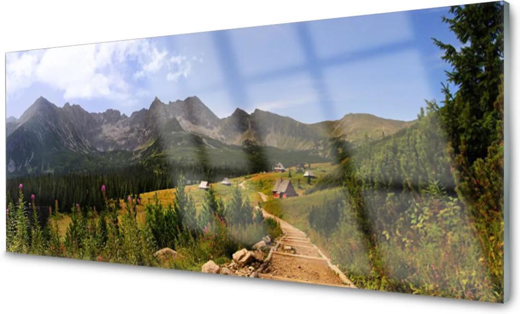 Skleněný obraz Hala góry droga natura łąka