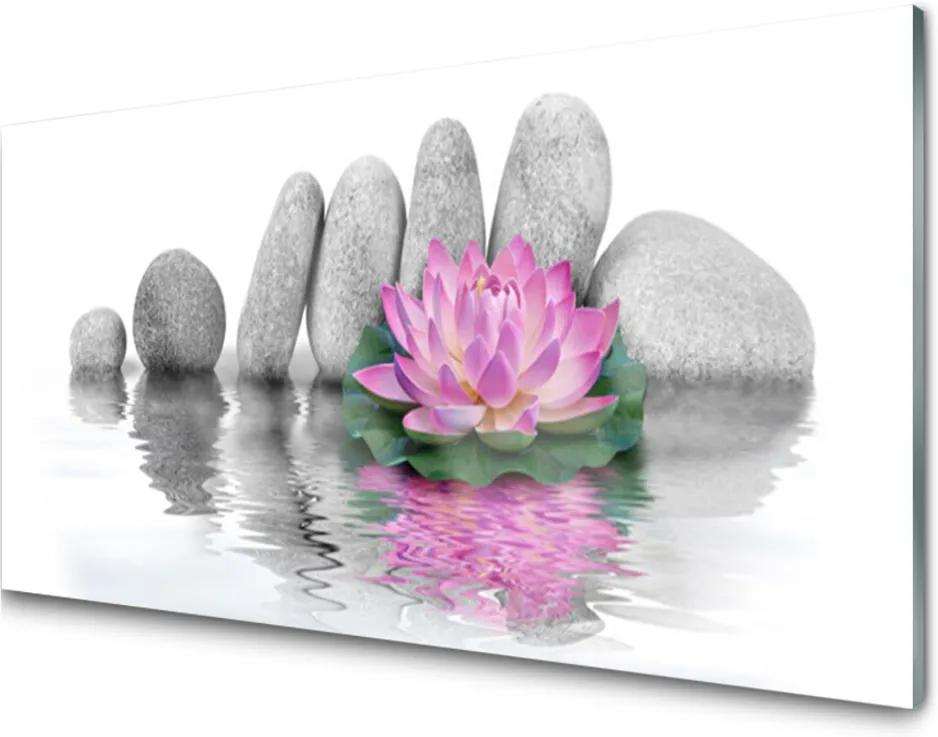 Skleněný obraz Květ Kameny Umění