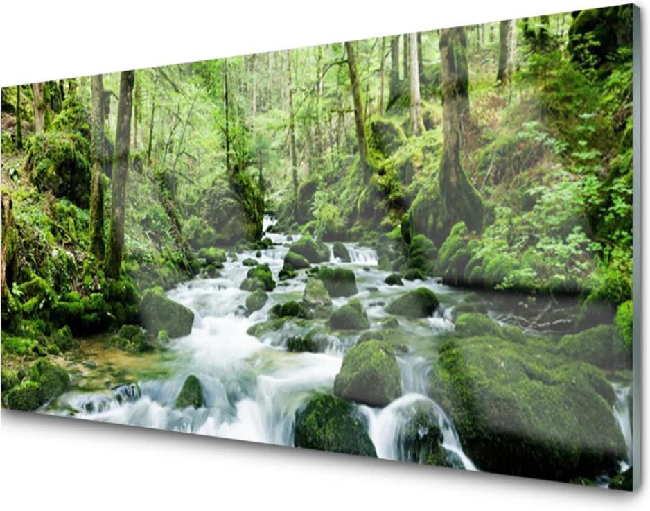 Sklenený obklad Do kuchyne Les Potok Vodopády Rieka