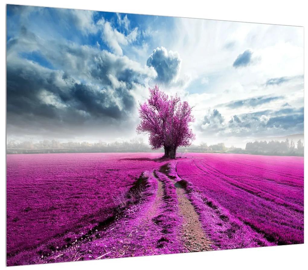 Obraz kvetinového poľa (K012034K7050)