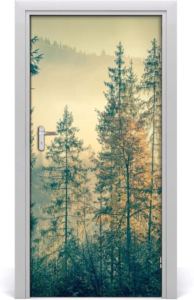 Fototapeta na dveře Mlha nad lesem