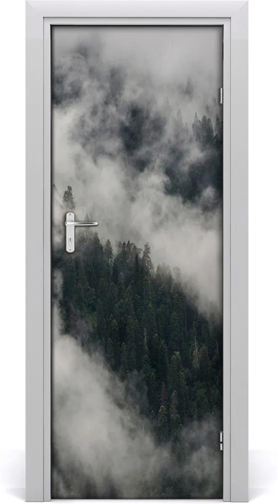 Fototapeta na dvere  mrak nad lesom