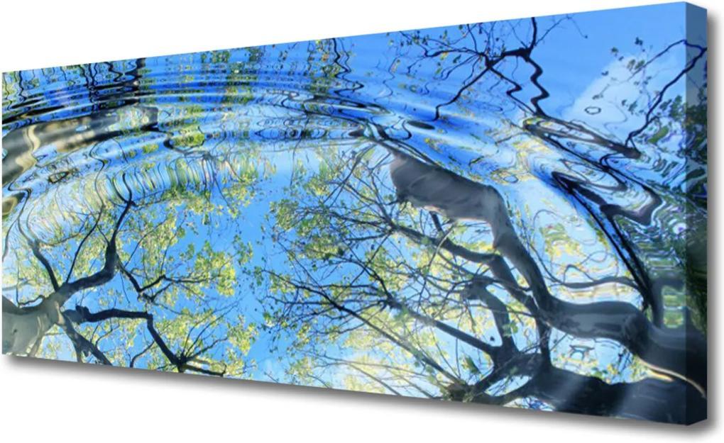 Obraz na plátně Voda stromy umění