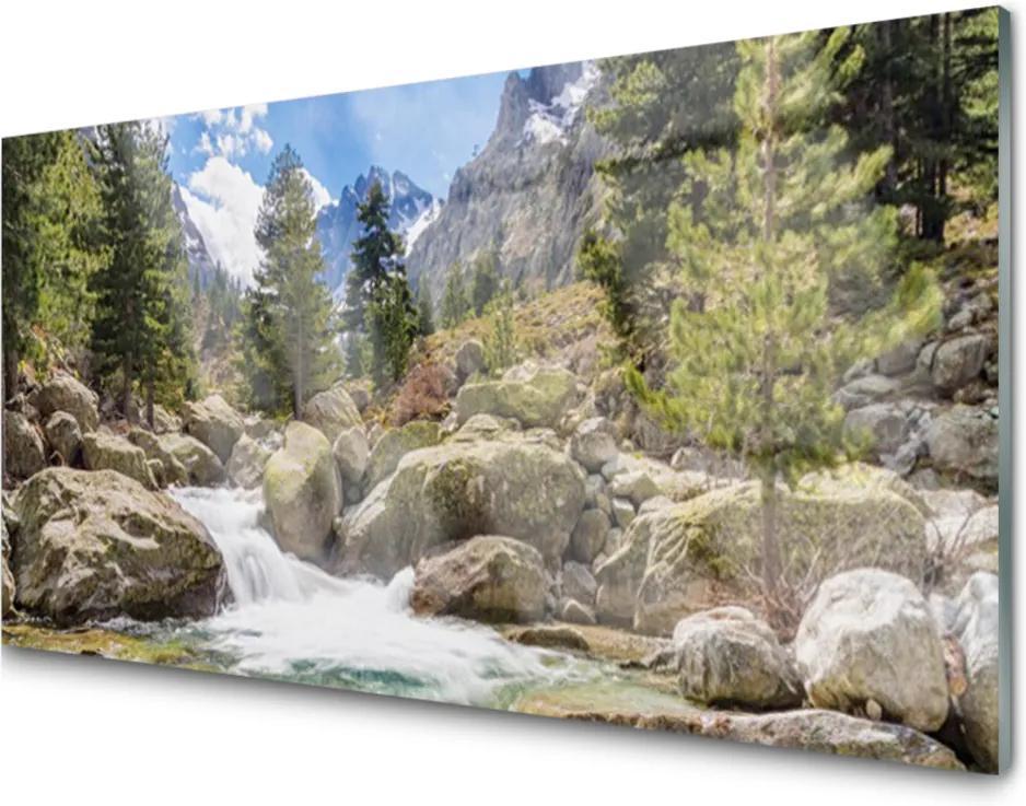 Skleněný obraz Hora les kameny řeka