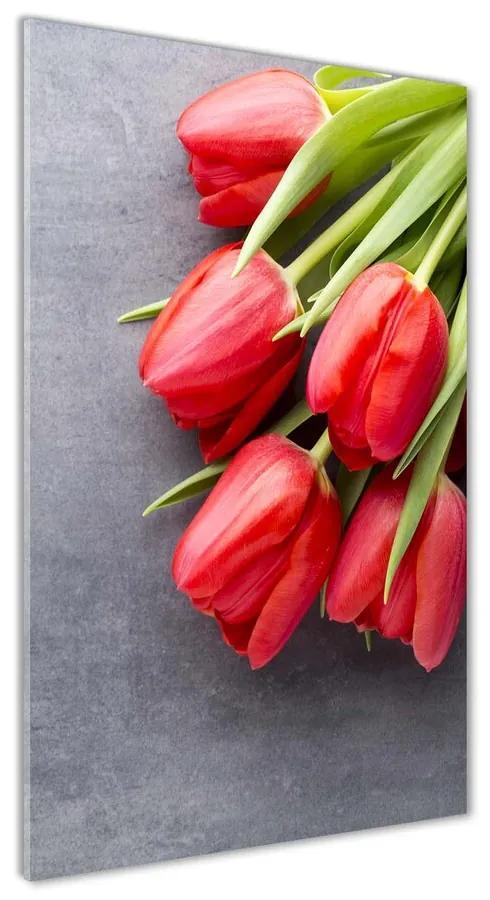 Foto obraz akrylový Červené tulipány pl-oa-70x140-f-99719823