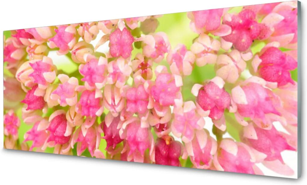 Obraz na skle Sklenený Kvet Lotosu