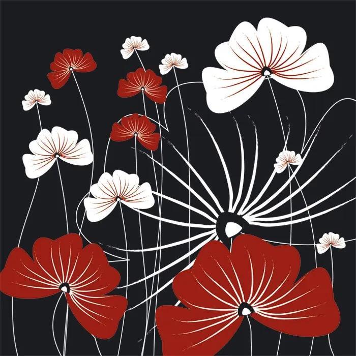 Dimex fototapeta Bieločervené kvety na čiernom pozadí L-331 | 220 x 220 cm